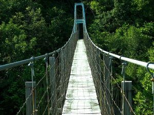 Pedestrian_Suspension_Bridge_near_the_Inn_at_Narrow_Passage